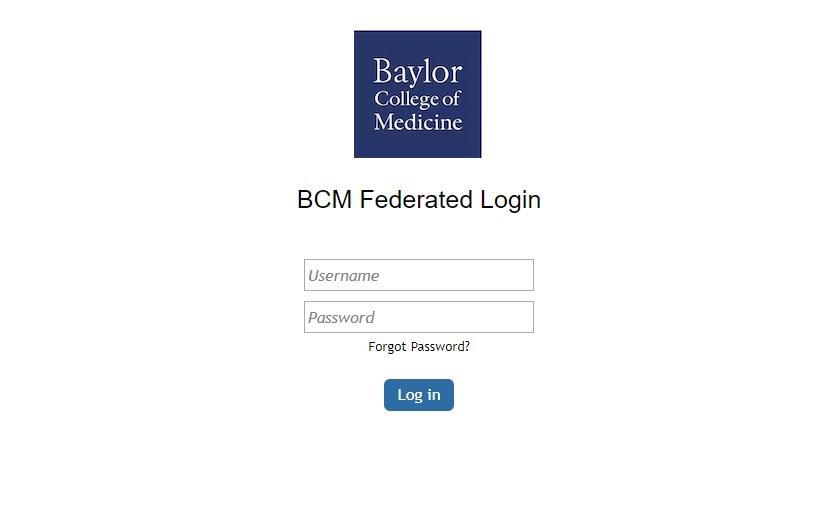 BCM Webmail